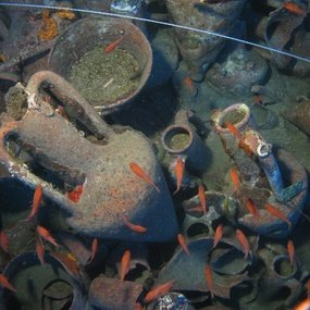 Chian amphorae in situ, in the cargo assemblage of the Mazotos shipwreck (Photographer: Bruce Hartzler. Courtesy: Maritime Archaeological Research Laboratory, Archaeological Research Unit, University of Cyprus).