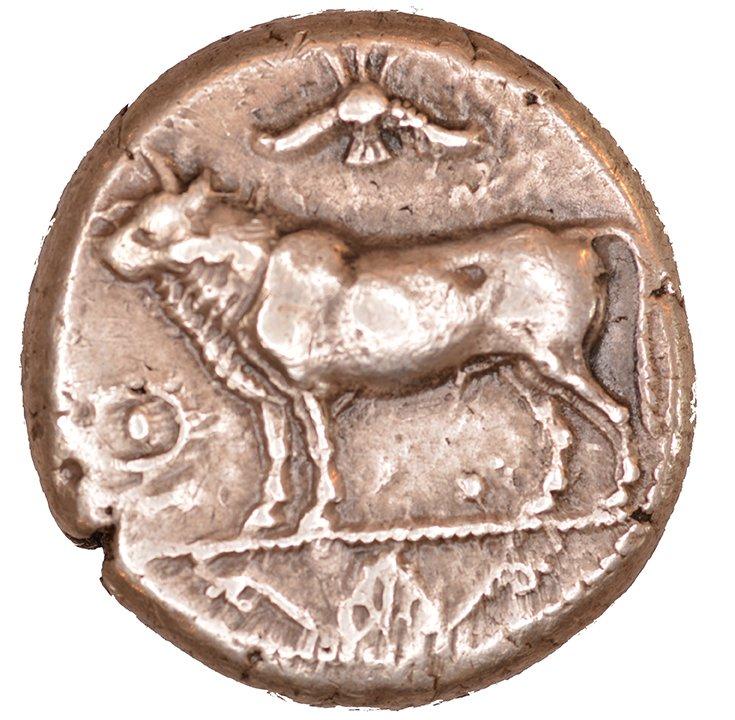 Εμπροσθότυπος Πάφος, Στάσανδρος, SilCoinCy A1064