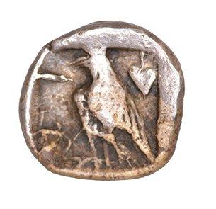 Οπισθότυπος Πάφος, Στάσανδρος, SilCoinCy A1066